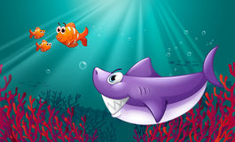 A big shark and three nemos under the sea Royalty Free Stock Photography