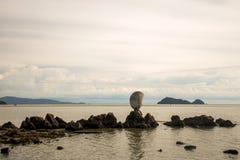 Big shell on rocks near blue ocean with beach background Koh Phangan island Thailand Royalty Free Stock Photo