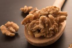 Big shelled walnuts Stock Image