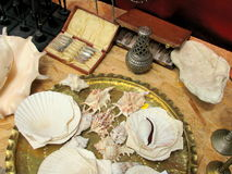 Big shells and antiquities for sale in a flea market Stock Photos