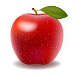 Big shiny red apple. Illustration of detailed big shiny red apple Stock Photo