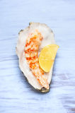 Big Shrimp with lemon in mussel shell Royalty Free Stock Images