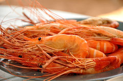 Big shrimps on the plate. Some shrimps on the plate Stock Photography