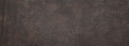 Big size leather texture Stock Image