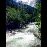 Kootenia Creek royalty free stock photography