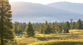 Free Big Sky EZ, Montana Royalty Free Stock Images - 96881629
