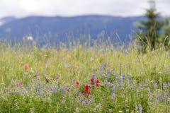Big Sky EZ, Montana Stock Photos