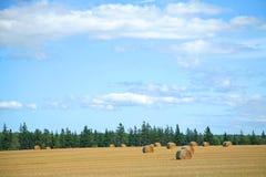 Big Sky Farm Stock Photos