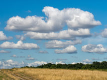 Big sky open parkland, countryside with great clouds. Royalty Free Stock Photo