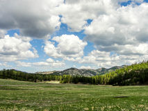 Big Sky. A view of the smaller Back Hills, South Dakota, in Custer State Park Stock Photo