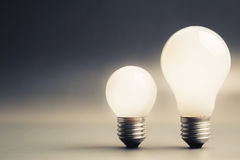 Big and Small Bulb Stock Photography