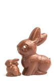 Big and small chocolate bunny rabbits Royalty Free Stock Photography