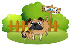 A big and a small dog near the signboard stock illustration