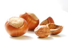 Big and small hazelnuts Royalty Free Stock Photos
