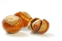 Big and small hazelnuts Royalty Free Stock Photography