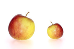 Big and small juicy apples Royalty Free Stock Image