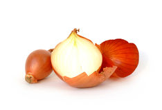 Big and small onions with peel isolated on white. Background stock images