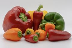 Big and small peppers stock image