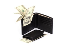Big and small purse with money Royalty Free Stock Photo