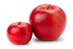 Big and small red apples on white Stock Photo