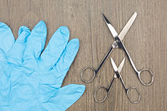 Big and small silver surgical scissors with blue latex glove Royalty Free Stock Photos