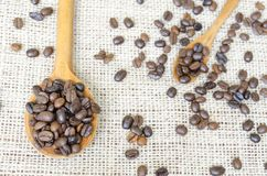 Big and small spoons filled with coffee beans Royalty Free Stock Photo