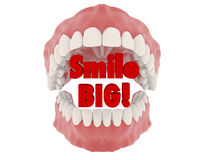Big Smile. Three dimensional teeth on white background Royalty Free Stock Image