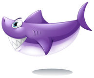 A big smiling shark. Illustration of a big smiling shark on a white background Royalty Free Stock Photo