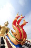 Big Snake in front of Buddha statue. In Thailand Temple Royalty Free Stock Photo