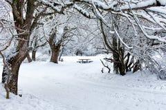 Big Snow Stock Images