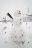 Big snow man Stock Photos