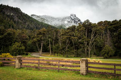Big snow mountains with forest, bariloche, mountain landscape Royalty Free Stock Photos