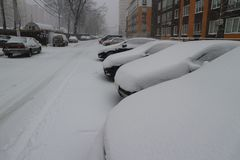 Cars under the snow in the yard Stock Image