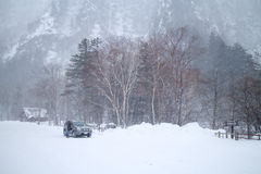 A big snowstorm at snow mountain area in Hokkaido, Japan. Hokkaido, Japan-Feb.2: A big snowstorm at snow mountain area. The temperature was -10 deg.C and it was Royalty Free Stock Photo