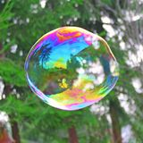 Big soap bubble. Closeup of a big soap bubble over the forest green background Royalty Free Stock Photography
