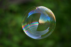 Big soap bubble on green. Big and round soap bubble floating in the garden Royalty Free Stock Photo