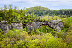 Big South Fork National River and Recreation Area Royalty Free Stock Photo