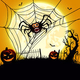 Big spider and pumpkins Royalty Free Stock Photos