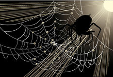 Big spider in web. Illustration with spider and web on dark background Royalty Free Stock Image