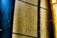 Big spiderweb in sunlight in front of shadowed wall. In warm sunlight royalty free stock photography