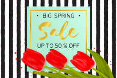 Big Spring sale background with beautiful flowers. Royalty Free Stock Photography