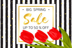 Big Spring sale background with beautiful flowers. Stock Photos