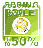 Big spring sale with butterfly Royalty Free Stock Photography