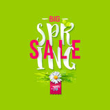 Big Spring sale label Royalty Free Stock Photography