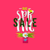 Big Spring sale rose label Royalty Free Stock Photo