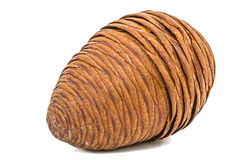 Big of spruce pinecone isolated on a white background Stock Photography