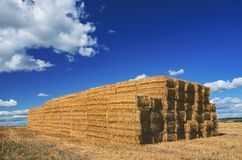 Big stack of rectangular hay stacks in empty field on a background of blue sky with beautiful clouds. stock photos