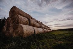 Big stacks of hay on a field. Great stacks of hay captured during sunset royalty free stock photos