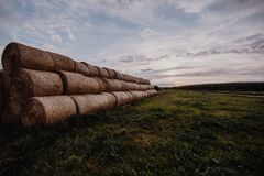 Big stacks of hay on a field. Great stacks of hay captured during sunset stock image
