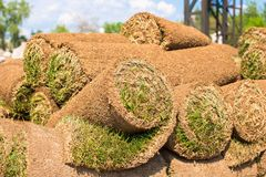 Big stacks of sod rolls for new lawn stock photo
